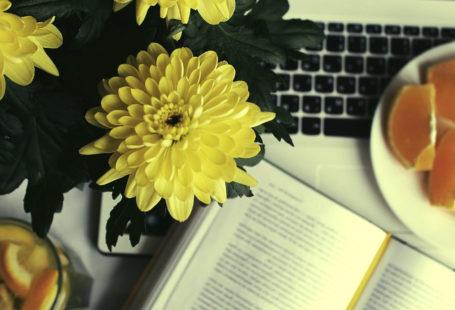 أهمية القراءة لكاتب المحتوى